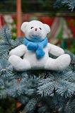 White teddy bear Royalty Free Stock Photography