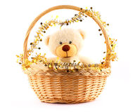 White teddy bear in a basket. Fluffy white teddy bear in a basket witn gold garland stock photos