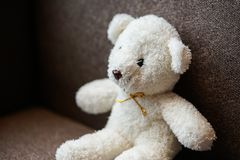 White teddy bear doll toy sit on a sofa couch. White teddy bear doll toy sit on the sofa couch stock photography