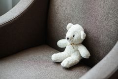 White teddy bear doll toy sit on a sofa couch. White teddy bear doll toy sit on the sofa couch royalty free stock photography