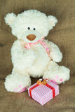 White teddy bear with gift box. On sackcloth royalty free stock images