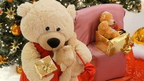 White teddy bear, holds a box with a gift in his paws and moves on the background of the Christmas tree close up view stock video footage