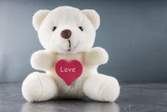 White teddy bear with love letter on red heart  gray background. Say i  you for valentine `s day concept. Royalty Free Stock Photography