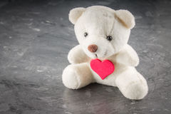 White teddy bear with love letter on red heart  gray background. Say i  you for valentine `s day concept. Stock Photography