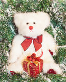 White teddy bear over christmas decoration Royalty Free Stock Photography