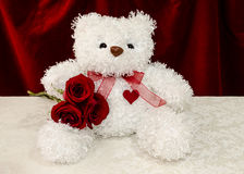 White teddy bear with red roses Stock Photography