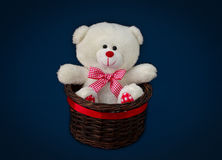 White teddy bear. Sitting in the basket royalty free stock images