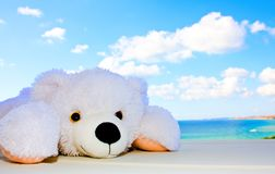 White teddy bear in the sky Royalty Free Stock Images