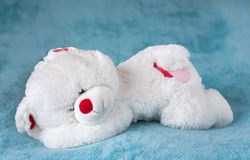 White teddy bear sleeping on the bed Stock Photography