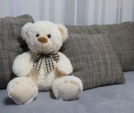 White teddy bear on the sofa. A white teddy bear with a bow on the sofa. He´s sitting betweend the pillows from the couch stock photo