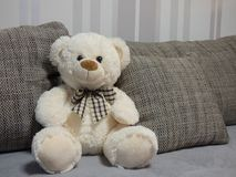 White teddy bear on the sofa. A white teddy bear with a bow on the sofa. He´s sitting betweend the pillows from the couch stock image