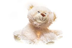 White Teddy bear  soft toy. Royalty Free Stock Photos