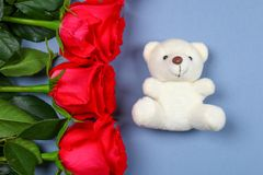 White teddy bear surrounded by pink roses on a grey table. Template for March 8, Mother's Day, Valentine's Day. White teddy bear surrounded by pink roses on a stock photos
