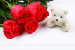 White teddy bear surrounded by pink roses on a white wooden table. Template for March 8, Mother's Day, Valentine's Day. royalty free stock photo