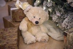 White teddy bear royalty free stock image