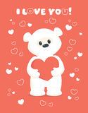 White teddy valentines card coral. Vector illustration of a cute white teddy bear standing and holding a heart in his paws. Design for Valentines greeting card Royalty Free Stock Photos