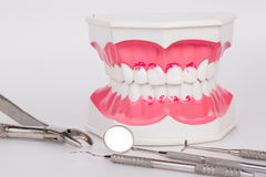 White teeth and dental instruments Royalty Free Stock Photos