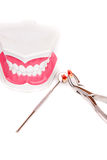 White teeth and dental instruments Stock Photography