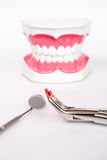 White teeth and dental instruments Stock Photo