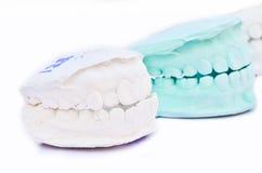 White teeth, model Stock Images