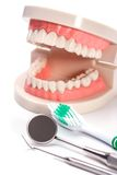 White teeth Royalty Free Stock Images