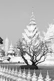 White temple and died tree Royalty Free Stock Images