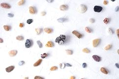 White textural background with a lot of sea pebbles. royalty free stock images