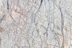 White texture of sea stone texture Stock Photography