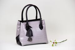 Fashionable women bag. White textured fashionable women bag Royalty Free Stock Images