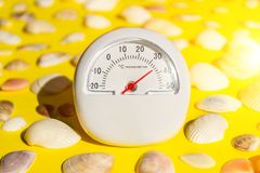 White thermometer with a temperature of +26 degrees Celsius and a lot of different seashells on a yellow background. The concept of hot summer, bright sun and stock photography