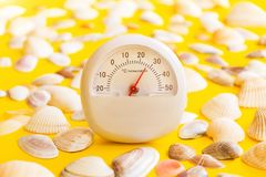 White thermometer with a temperature of +26 degrees Celsius and a lot of different seashells on a yellow background. The concept of hot summer, bright sun and royalty free stock image