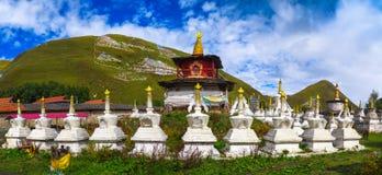 White tibetan pagoda. A group of tibet style stupas under blue sky in Tibetan Plateau Stock Photography