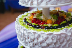 White tiered cake with chunks of berries and fruits Royalty Free Stock Images