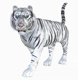 White tiger. 3d render of a white  tiger Stock Photography