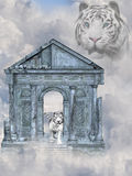 White Tiger. 3d render of White Tiger Stock Photography