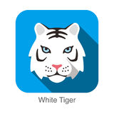 White Tiger, Cat breed face cartoon flat icon design Royalty Free Stock Photos