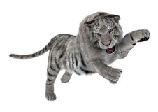 White Tiger. 3D digital render of a fighting white tiger isolated on white background Royalty Free Stock Photo
