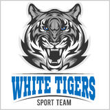 White tiger head, Vector illustration Stock Photography