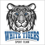 White tiger head, Vector illustration Royalty Free Stock Image