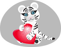 White tiger with a heart in his paws. Royalty Free Stock Images