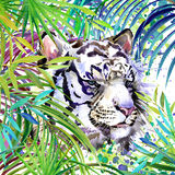 White tiger illustration. Tropical exotic forest, white tiger, green leaves, wildlife, watercolor illustration. Stock Photography