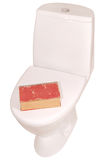 White toilet bowl and book (Clipping path) Royalty Free Stock Photos