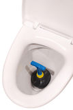 White toilet bowl and plunger (Clipping path) Royalty Free Stock Image