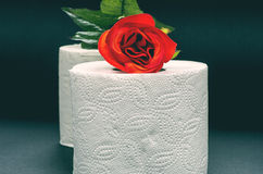 White toilet paper with red rose Royalty Free Stock Photos