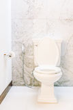 White toilet seat decoration in bathroom interior Royalty Free Stock Images