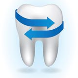 White tooth on blue background Stock Image