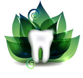 White tooth and bright green leafs. At the background Stock Image