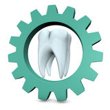 Tooth Gear Stock Photography