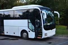 White tourist bus for excursions. The bus is parked in a parking lot near the park.  royalty free stock photography