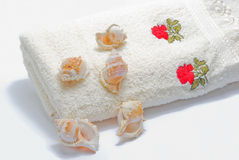 White towel. A sea shells lying on the white towel Royalty Free Stock Images